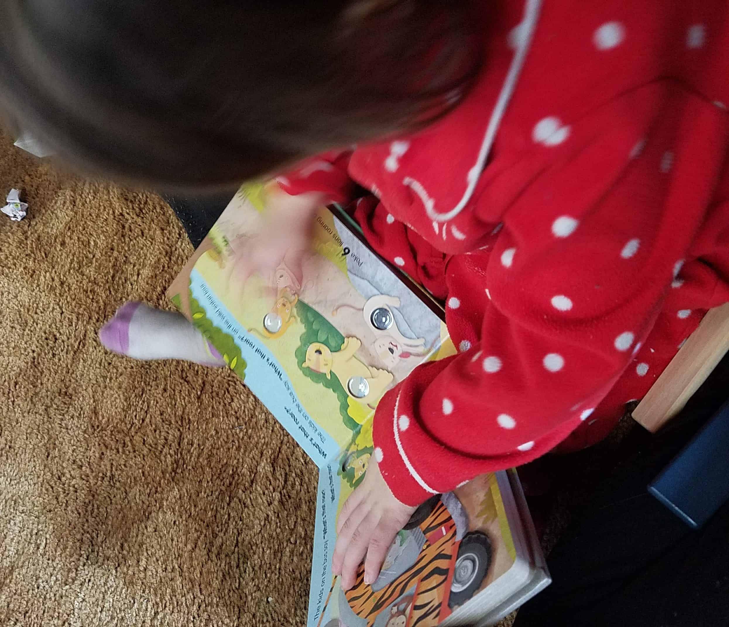 timberdoodle preschool custom curriculum