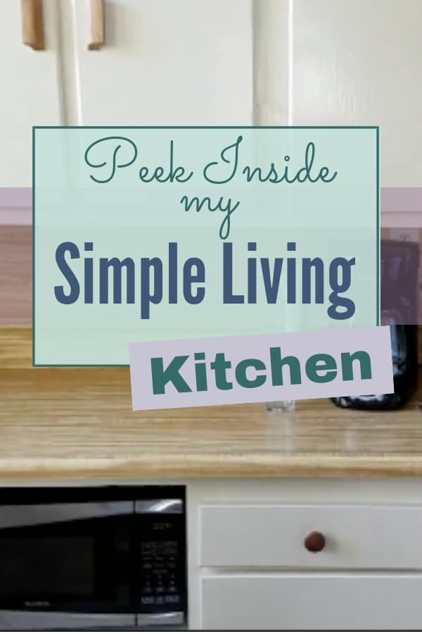 Take a look at what a simple living minimalist kitchen really looks like! | minimalism | mom life | kitchen organization | #decluttering #minimalistliving #simpleliving