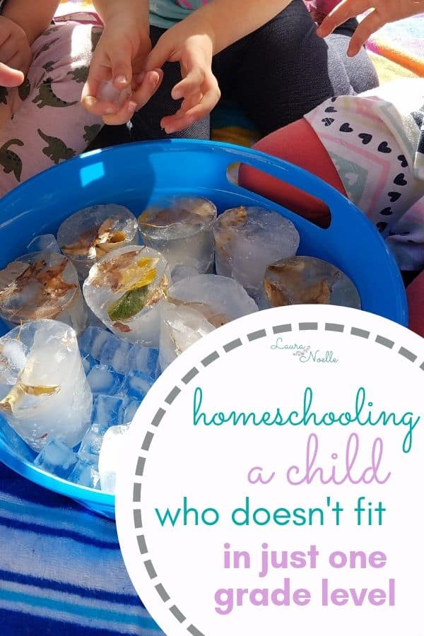 homeschooling a child who doesn't fit in one grade level