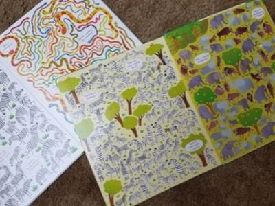 original vs zoo picture puzzle books