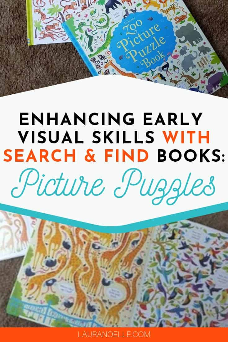 visual skills with picture puzzle books