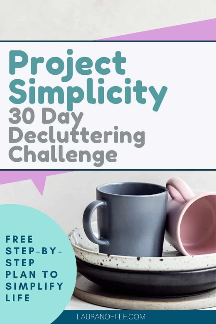 project simplicity plan